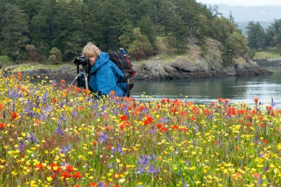 Kim Kafton photographing, Wildflowers at Yellow Island, San Juan